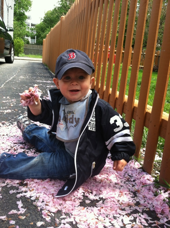 Picking flowers (or in this case, flower petals)